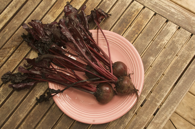Recipe: Pickled Beets are Delicious