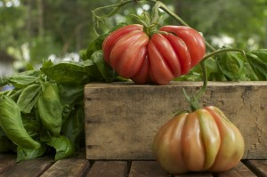 Wordless Wednesday: Gorgeous Zapotec Pleated Tomatoes