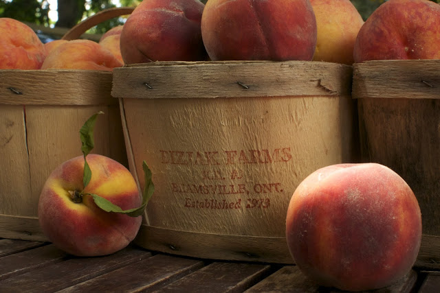 How to Can a Bushel of Peaches in 7 hours with Some Swearing, a New Pot and 29 Jars