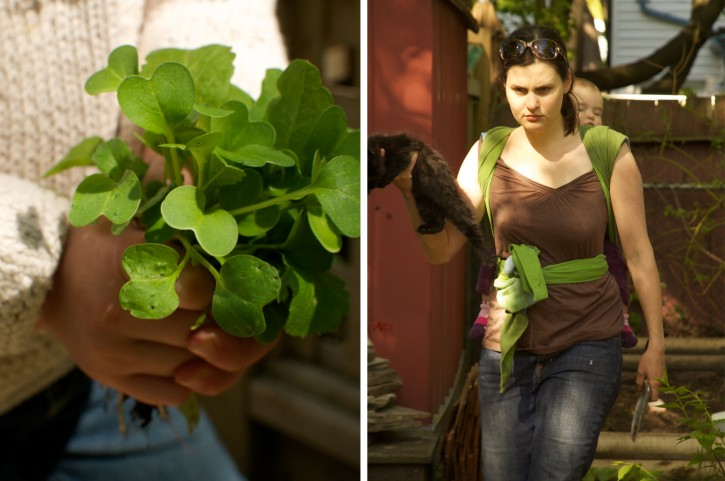Internet Inspiration, an Easy Growing Giveaway, and a New Herb Garden