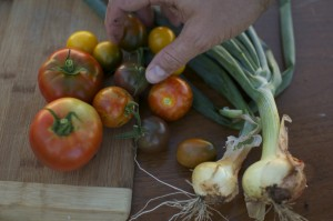 Tigerella Tomatoes and Fresh Onions via Cubits Organic Living