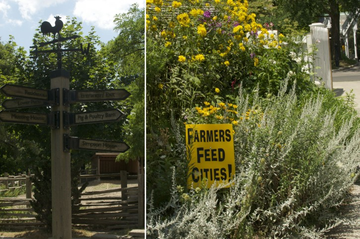 Riverdale Farm with Farmers Feed Cities