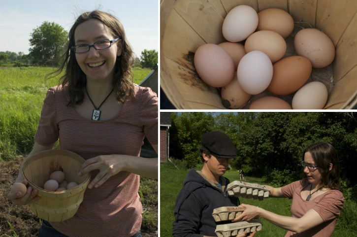 Roasted Chicken with Apples and Cider: Meet Southern Ontario Canadian Food Heroes Heather and Steve