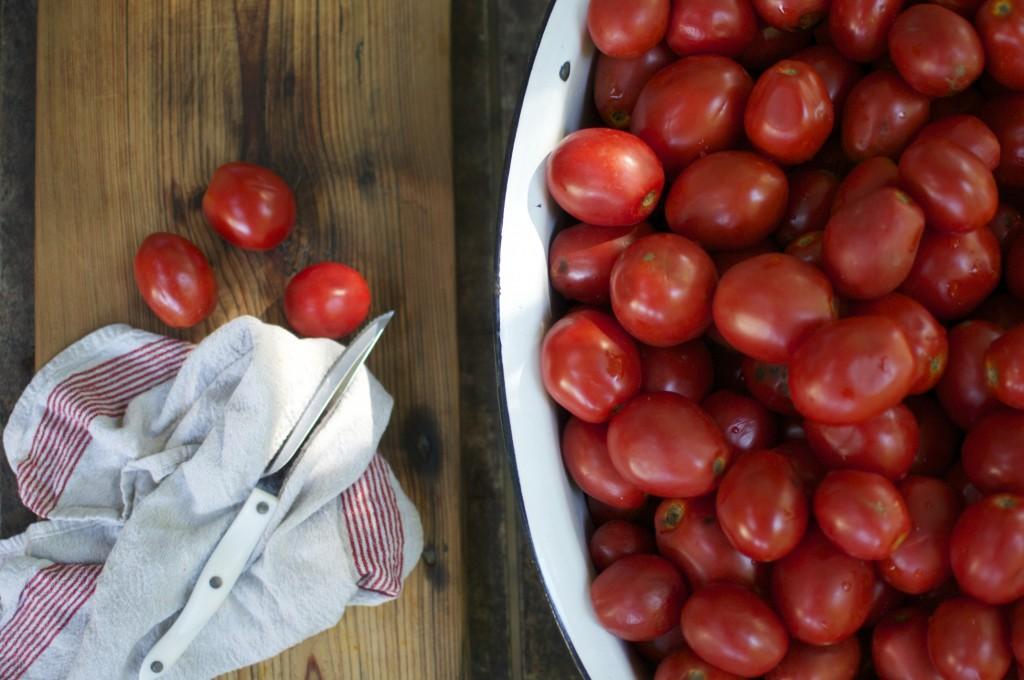 Cutting Tomatoes www.CubitsOrganics.com