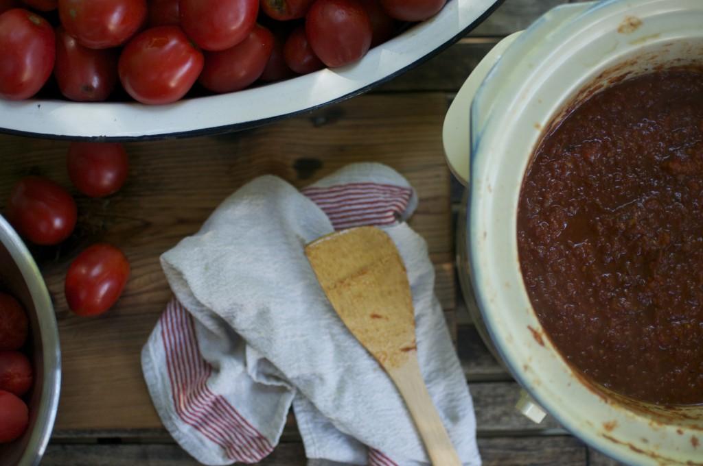 Colour of Tomato Sauce www.CubitsOrganics.com