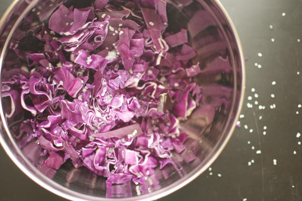 Making Purple Cabbage Sauerkraut www.CubitsOrganics.com