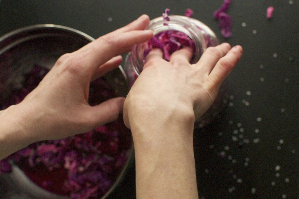 Making Purple Cabbage Sauerkraut www.CubitsOrganics.com