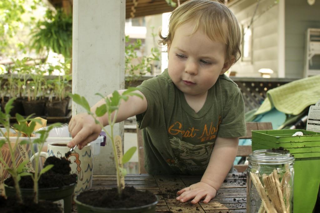 kids planting seedlings www.cubitsorganics.com