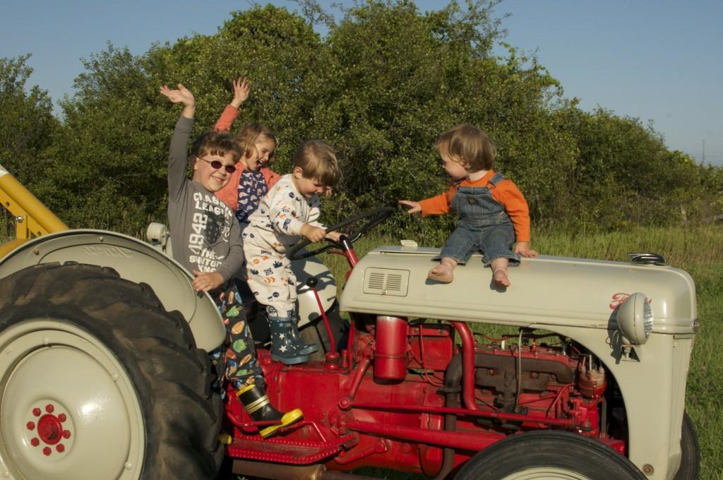 Tractor with kids www.cubitsorganics.com