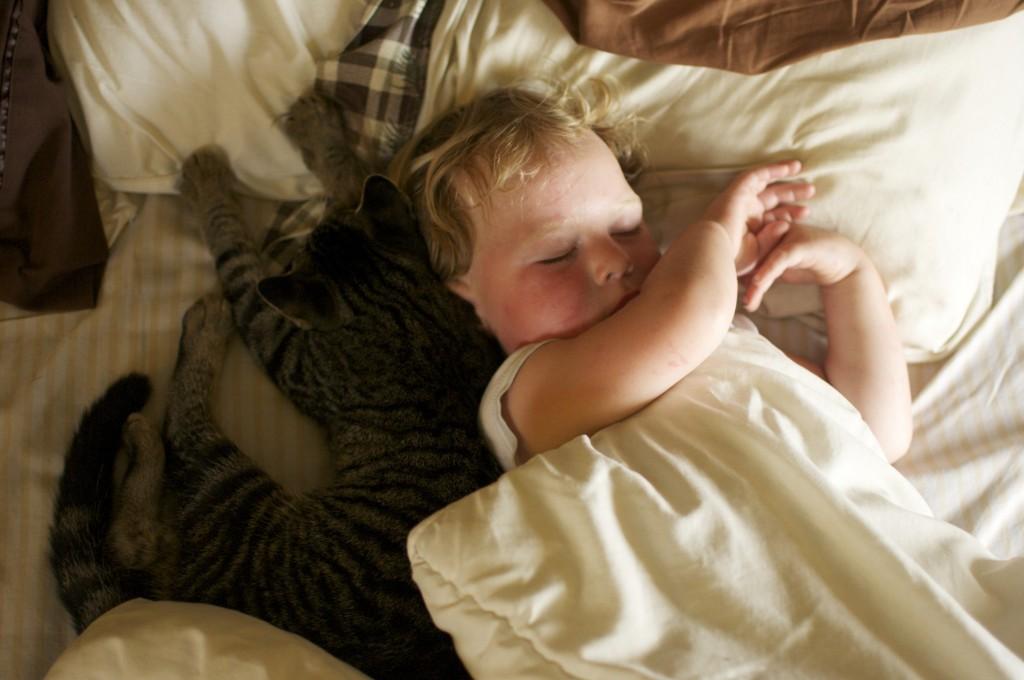 Toddler and Kitten www.CubitsOrganics.com