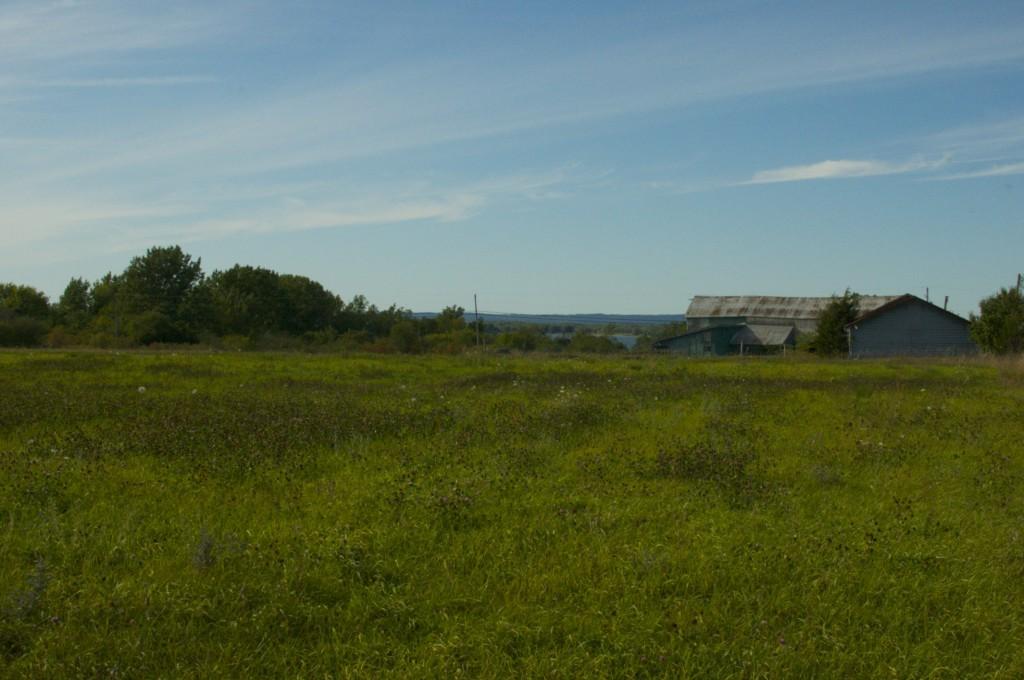 Our Ontario Farm www.cubitsorganics.com